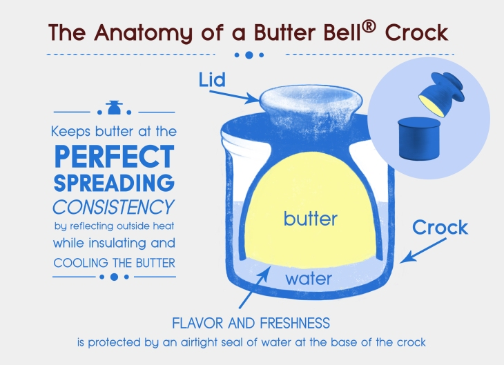 infographic-anatomy-of-butterbell.jpg
